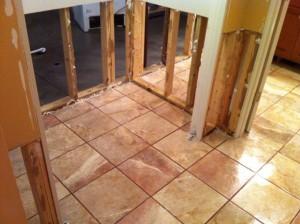 Mold Restoration Job