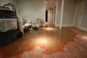 Water Damage in Douglas