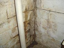 Water Damage and Mold In A Basement