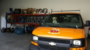 Water Damage Tallapoosa SUV and Dog At Warehouse
