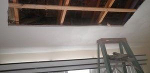Ceiling Restoration After Found Mold Growth