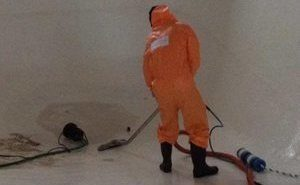 Mold Cleanup Tech At Work