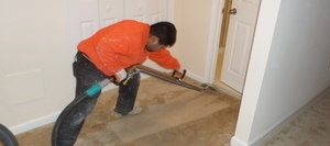 Mold Removal Tech Cleaning Up Water Damage