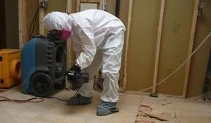 Water Damage Technicians Removing Moldy Floor