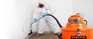 mold-removal-remediation-suit-water-damage